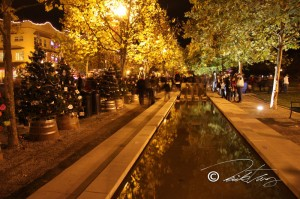 Holiday Trees and Fountain 2